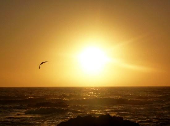 Coucher de soleil - Pescadero State Beach