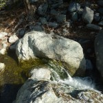 Sunol Regional Wilderness – Canyon View Trail - Waterfall