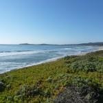 Half Moon Bay - Bord de plage, sauvage